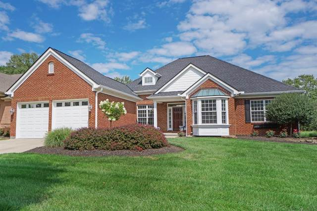 11778 Wingate Lane, Sycamore Twp, OH 45249 (#1670643) :: The Chabris Group