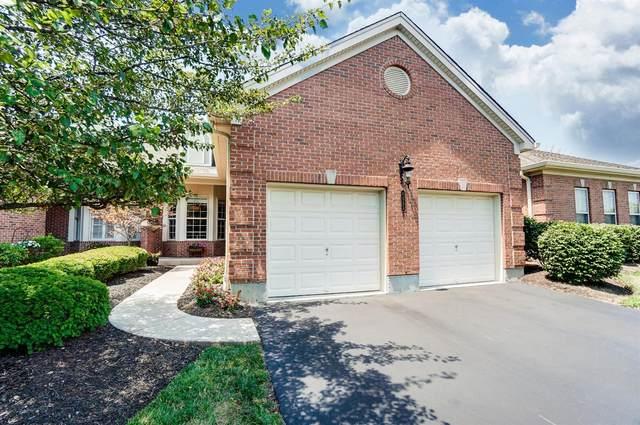 6523 Foxtail Lane, Liberty Twp, OH 45044 (#1670683) :: Century 21 Thacker & Associates, Inc.