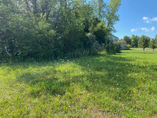 0 Pineview Court, Hanover Twp, OH 45011 (#1670808) :: The Chabris Group