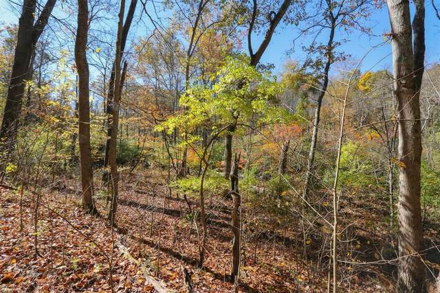 2136 Harcourt Drive, Anderson Twp, OH 45244 (MLS #1671774) :: Apex Group