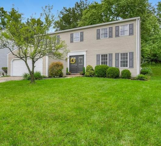 146 Cedarbrook Drive, Loveland, OH 45140 (MLS #1671952) :: Apex Group