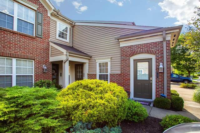 7209 English Drive, Newtown, OH 45244 (MLS #1671969) :: Apex Group