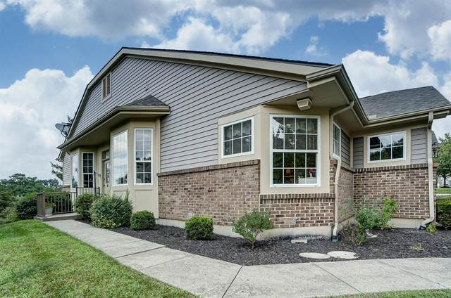 2447 Cardinal Hill Court, Cincinnati, OH 45230 (#1673993) :: The Chabris Group
