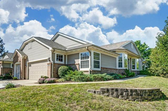 7791 Fancycab Court, Springfield Twp., OH 45231 (MLS #1674058) :: Apex Group
