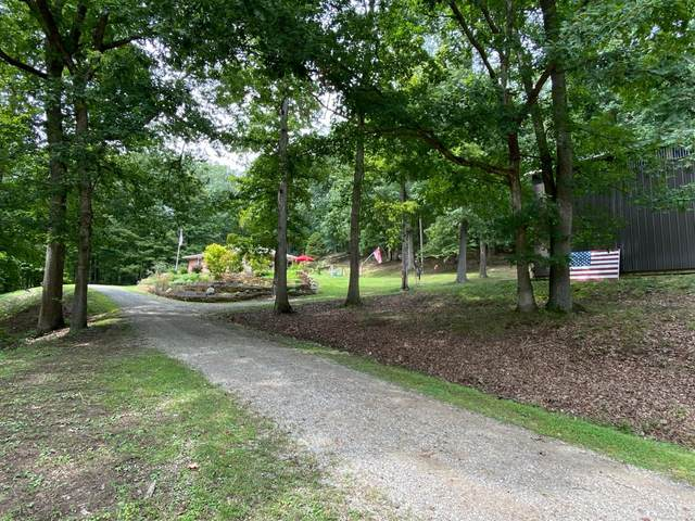 877 Tong Hollow Road, Paxton Twp, OH 45612 (MLS #1674435) :: Apex Group