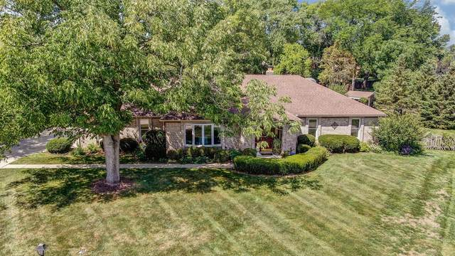 6855 Adamwald Court, Miami Twp, OH 45459 (#1675090) :: The Chabris Group