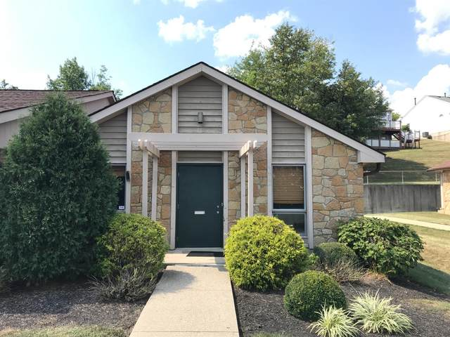 424 Ray Norrish Drive, Springdale, OH 45246 (#1675788) :: The Chabris Group