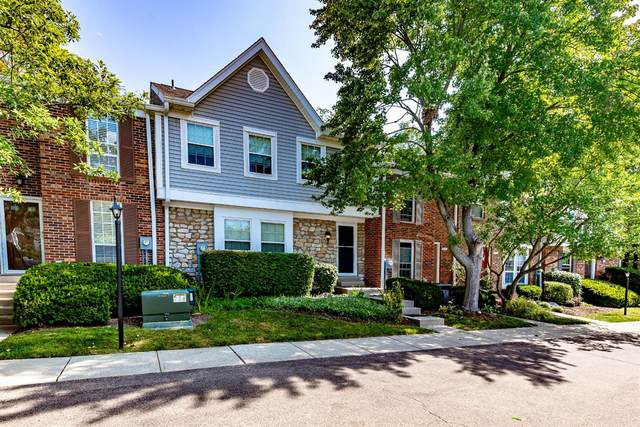 8059 Hetz Drive, Sycamore Twp, OH 45242 (MLS #1675957) :: Apex Group