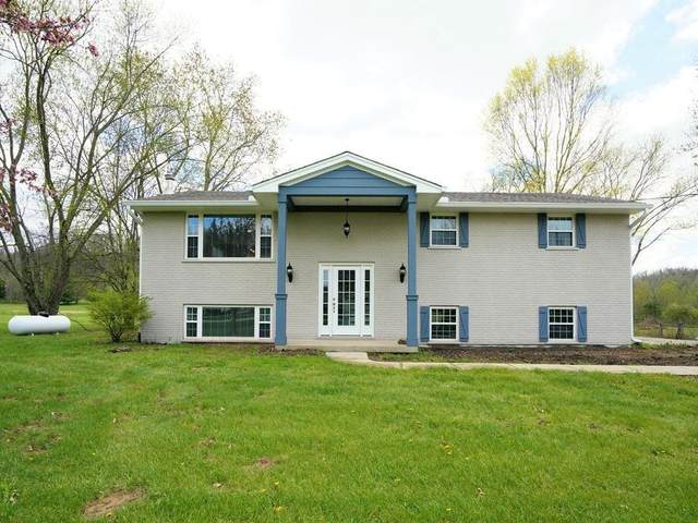 8197 New Haven Road, Crosby Twp, OH 45030 (MLS #1676395) :: Apex Group