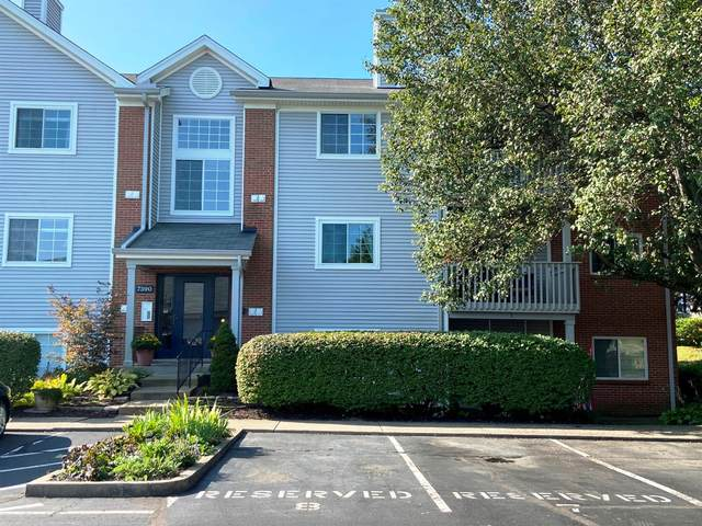 7390 Ridgepoint Drive #11, Anderson Twp, OH 45230 (#1676866) :: The Chabris Group