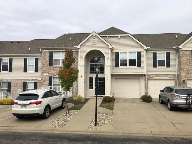 250 Logsby Place L, Milford, OH 45150 (MLS #1677564) :: Apex Group