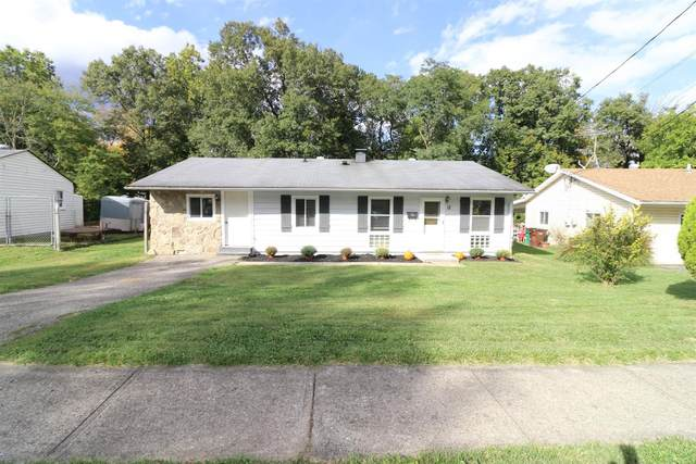 12 Iroquois Drive, Loveland, OH 45140 (MLS #1678330) :: Apex Group