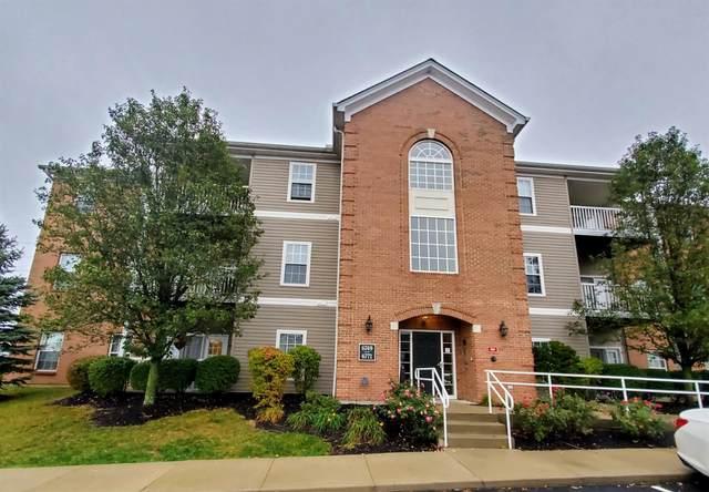 6763 Kelseys Oak Court, Green Twp, OH 45248 (#1680149) :: Century 21 Thacker & Associates, Inc.