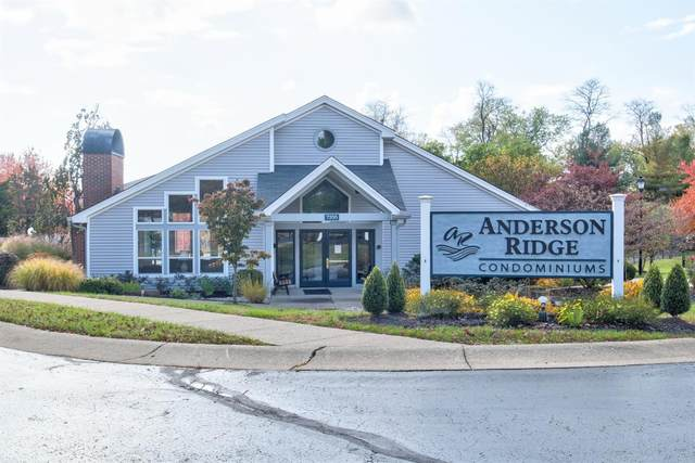 7382 Ridgepoint Drive #4, Anderson Twp, OH 45230 (MLS #1680961) :: Apex Group