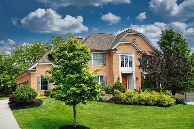 11184 Woodlands Way, Blue Ash, OH 45241 (#1700552) :: The Huffaker Group