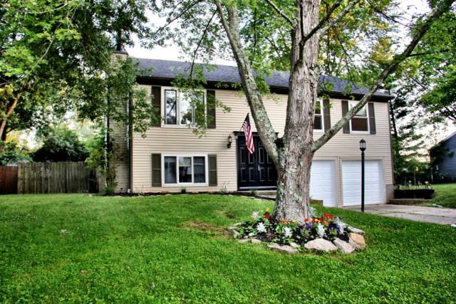 54 Beech Circle, Amelia, OH 45102 (#1582534) :: The Dwell Well Group