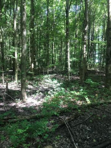 2705-B Jackson Pike, Stonelick Twp, OH 45103 (#1583089) :: The Dwell Well Group
