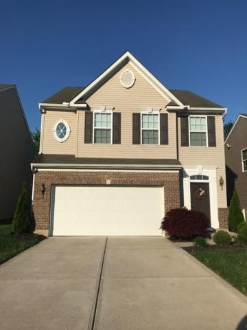 6064 Marsh Circle, Goshen Twp, OH 45140 (#1584104) :: The Dwell Well Group