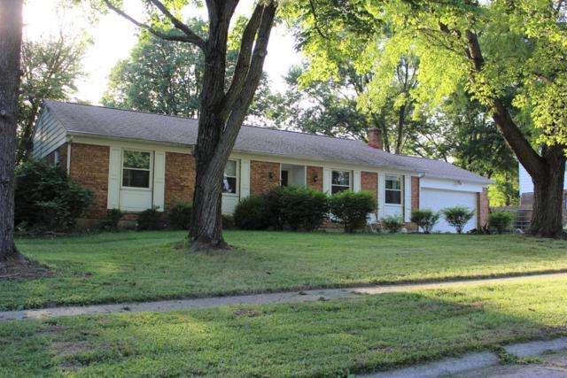 10367 Springrun Drive, Springfield Twp., OH 45231 (#1584128) :: Bill Gabbard Group