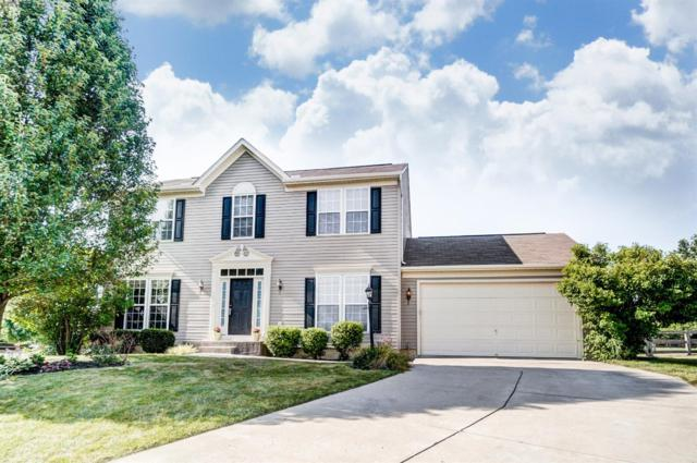 8183 Colyn Court, Liberty Twp, OH 45044 (#1587954) :: Bill Gabbard Group