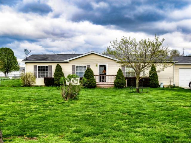 9590 Turtle Creek Road, Florence, IN 47020 (#1594806) :: Chase & Pamela of Coldwell Banker West Shell