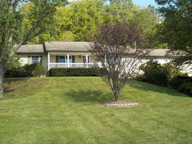 1489 Us Rt 52, Lewis Twp, OH 45121 (#1595935) :: Bill Gabbard Group