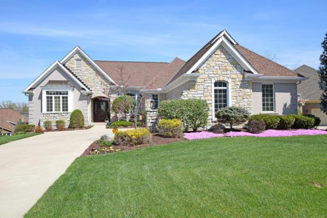 10219 Ryans Way, Blue Ash, OH 45241 (#1618024) :: Chase & Pamela of Coldwell Banker West Shell