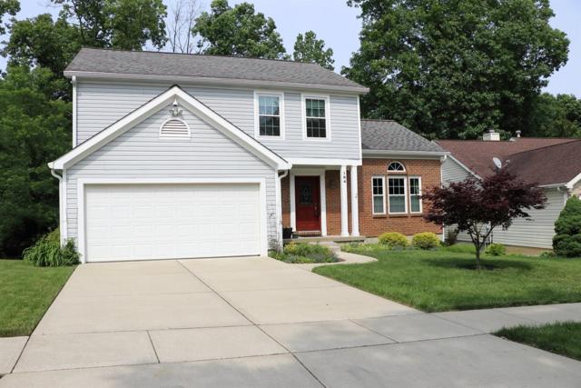 184 Cannonade Drive, Loveland, OH 45140 (#1622654) :: Chase & Pamela of Coldwell Banker West Shell