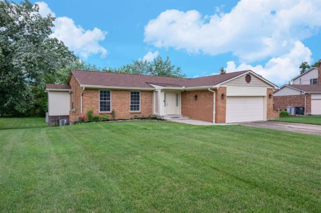 5318 Thrasher Drive, Green Twp, OH 45247 (#1627264) :: Chase & Pamela of Coldwell Banker West Shell