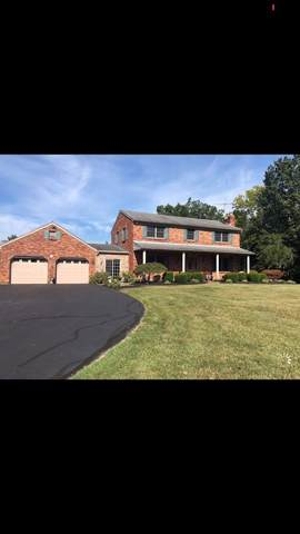 3923 Lainey Drive, Morgan Twp, OH 45053 (#1637781) :: The Chabris Group