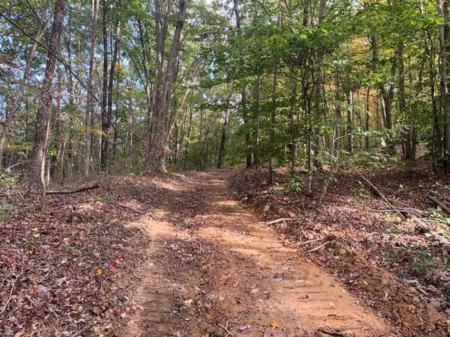 97-A Phipps Road, Lucasville, OH 45648 (MLS #1642229) :: Apex Group