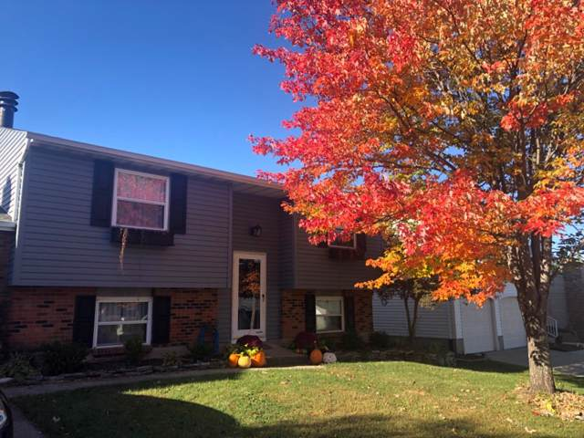 5419 Style Lane, Delhi Twp, OH 45238 (#1644920) :: The Chabris Group