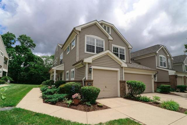 7814 Gapstow Bridge, Springfield Twp., OH 45231 (#1665688) :: The Chabris Group