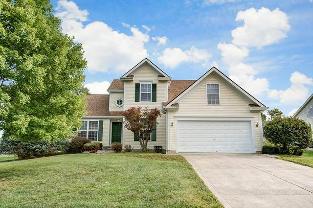 796 Andrea Drive, Miami Twp, OH 45140 (MLS #1675613) :: Apex Group