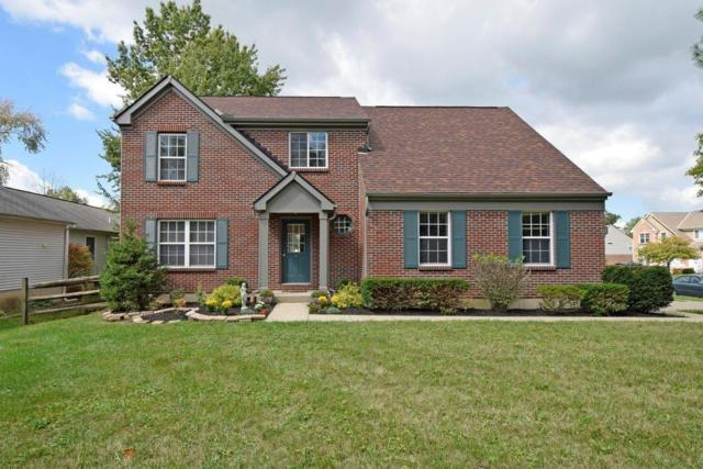 8615 Sunmont Drive, Anderson Twp, OH 45255 (#1554089) :: The Dwell Well Group