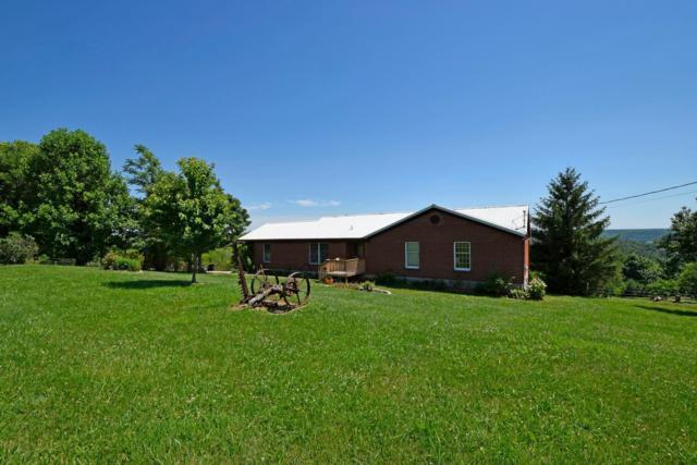 100 Riverview Lane, Franklin Twp, OH 45120 (#1584388) :: Bill Gabbard Group