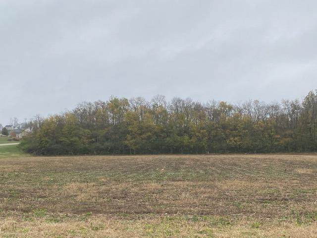 0 Blue Rock Road Lot 6, Crosby Twp, OH 45030 (#1701003) :: The Susan Asch Group