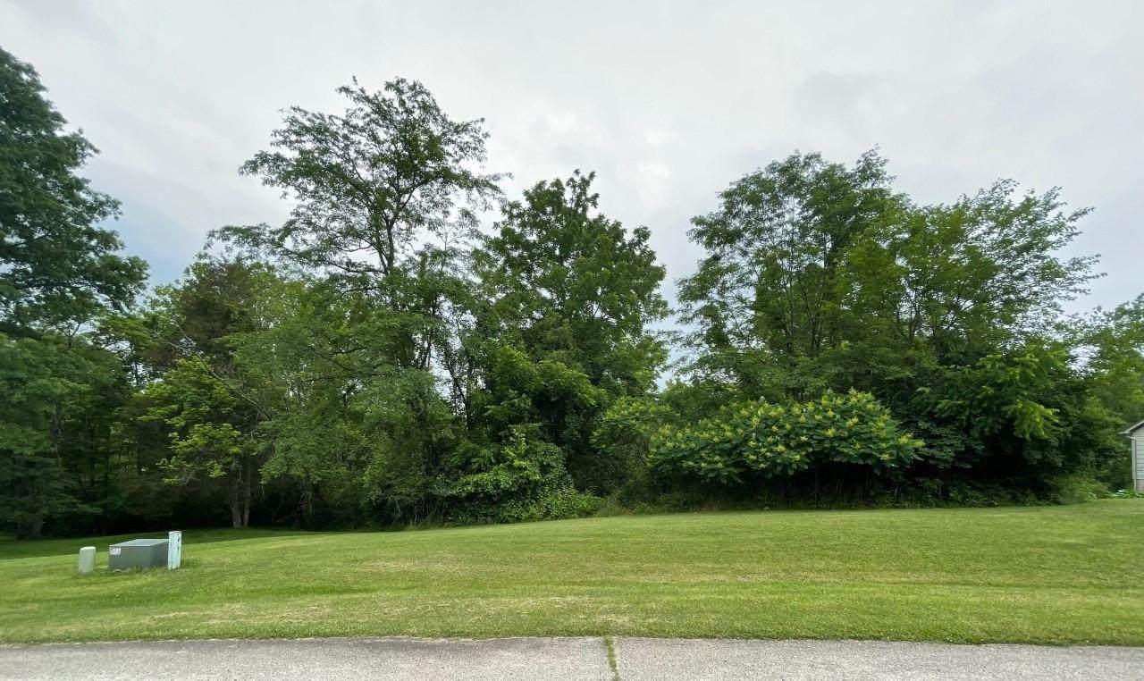 0 Poplar Ridge Drive - Photo 1