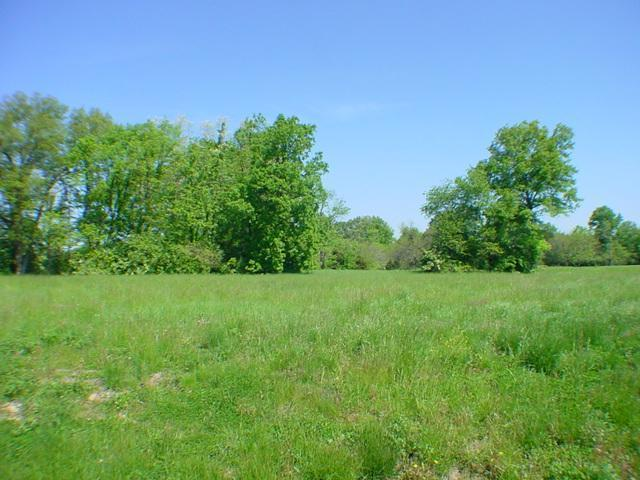0-Lot 12 Creekside Drive, Harlan Twp, OH 45162 (#1342348) :: The Dwell Well Group