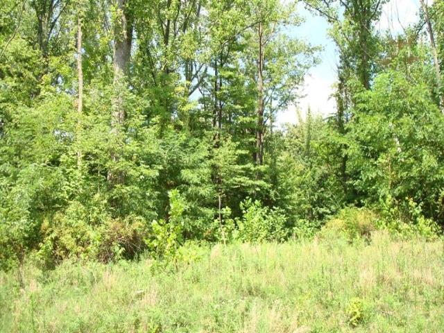 12 Sherilyn Lane, Stonelick Twp, OH 45103 (#1507858) :: Bill Gabbard Group