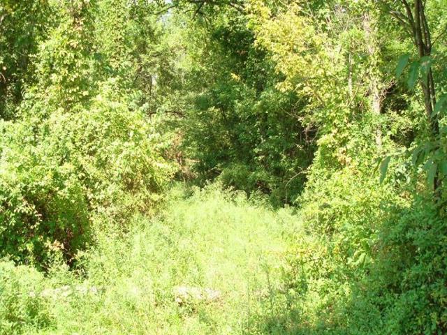 15 Sherilyn Lane, Stonelick Twp, OH 45103 (#1507900) :: Bill Gabbard Group