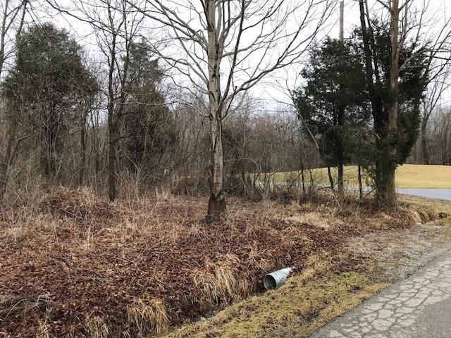 0-2.5ac Osceola Road, Harlan Twp, OH 45152 (#1568583) :: The Dwell Well Group