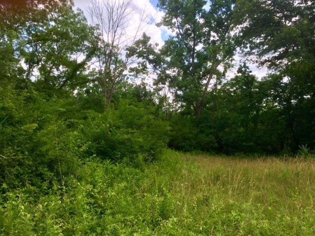 0-1299 Cresthaven Drive, Lawrenceburg, IN 47025 (#1585055) :: The Dwell Well Group