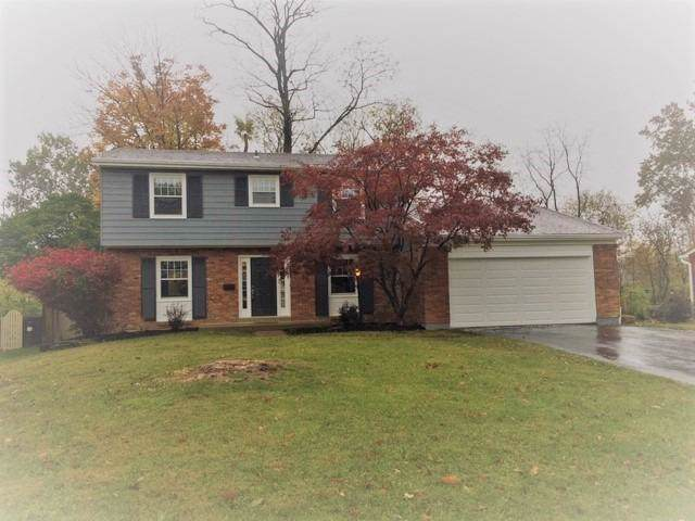 8856 Cavalier Drive, Springfield Twp., OH 45231 (#1643170) :: The Chabris Group