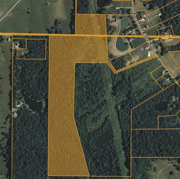 0 Chappelow Ridge Road, West Harrison, IN 47060 (#1665734) :: The Chabris Group