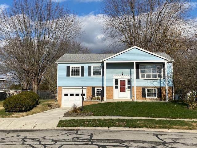 523 Oakridge Drive, Wilmington, OH 45177 (#1683891) :: Century 21 Thacker & Associates, Inc.