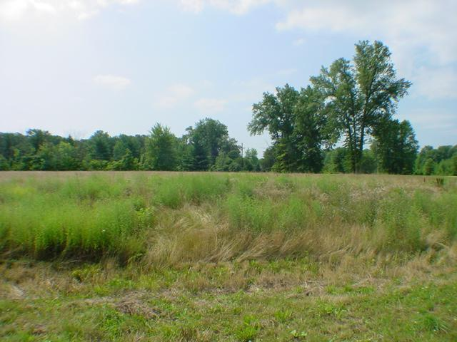 0-Lot 3 Creekside Drive, Harlan Twp, OH 45162 (#1342338) :: The Dwell Well Group