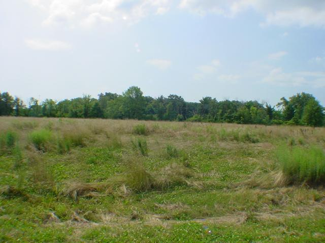 0-Lot 4 Creekside Drive, Harlan Twp, OH 45162 (#1342340) :: The Dwell Well Group