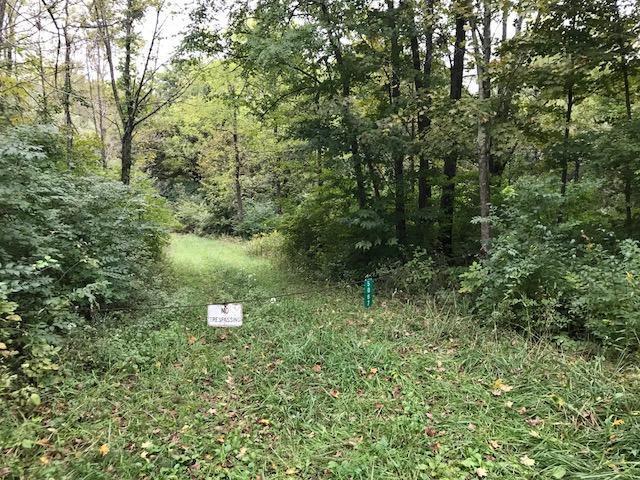 5067 Fischer Road, Harlan Twp, OH 45113 (#1597632) :: Bill Gabbard Group