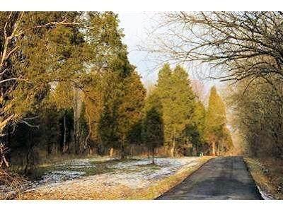 15 Pine Run Lane, Batavia Twp, OH 45103 (#1599940) :: The Chabris Group